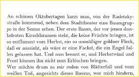 Bachmann_Stadttheater_Text